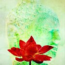 buddha and lotus by creativemonsoon
