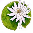 WHITE LILY FLOWER PAINTING ILLUSTRATION by CyraCancel