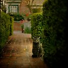 Tigger in the Garden by Lynn Starner