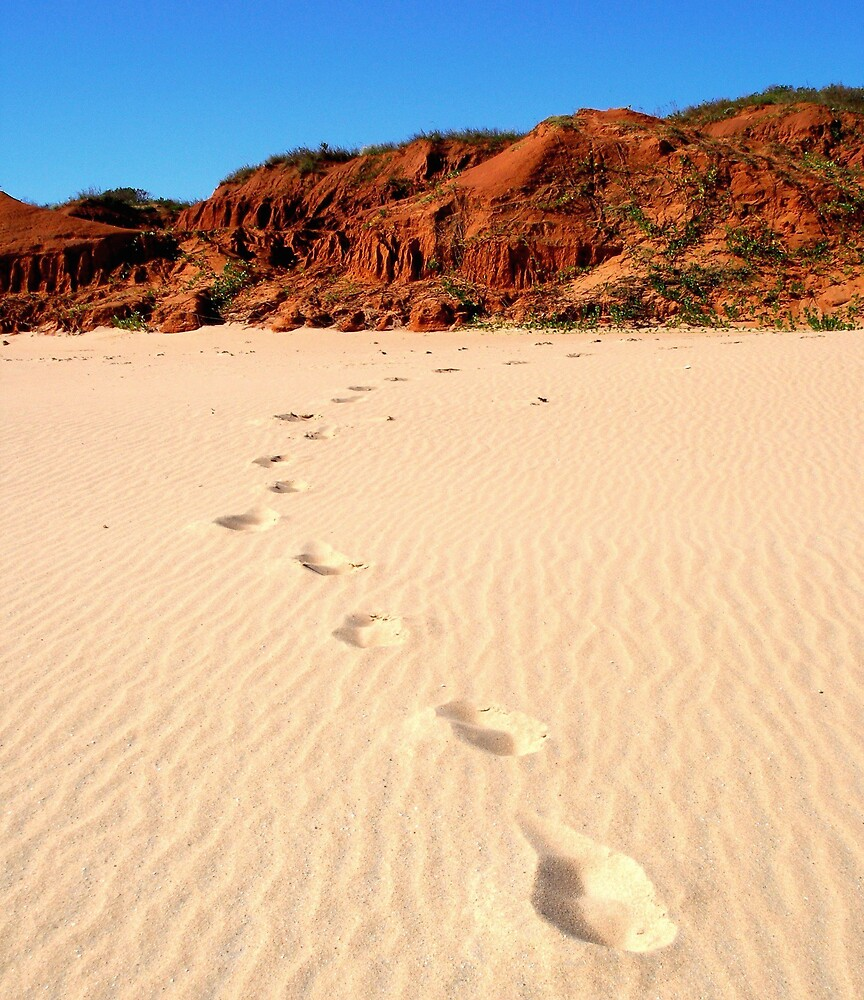 Footprints by Leila Kennett