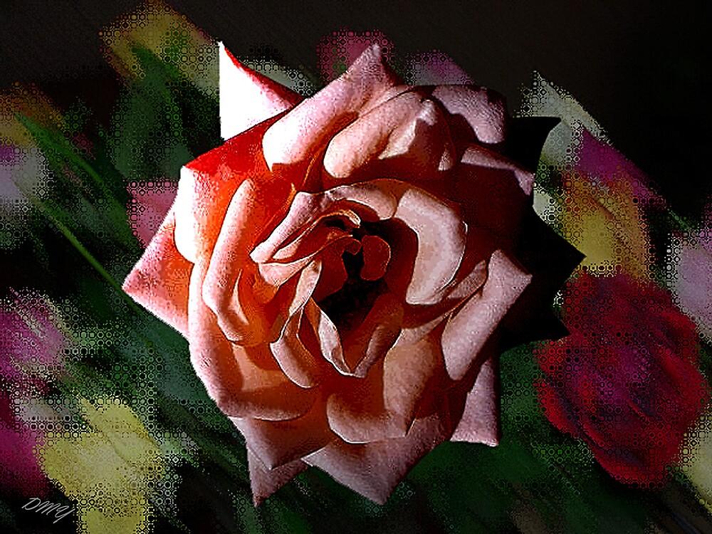 Simply a Rose by shadyuk