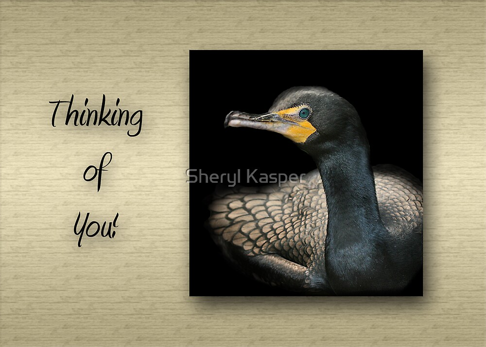 Double-Crested Cormorant by Sheryl Kasper