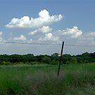 Hot Summer Day in Texas by Glenna Walker
