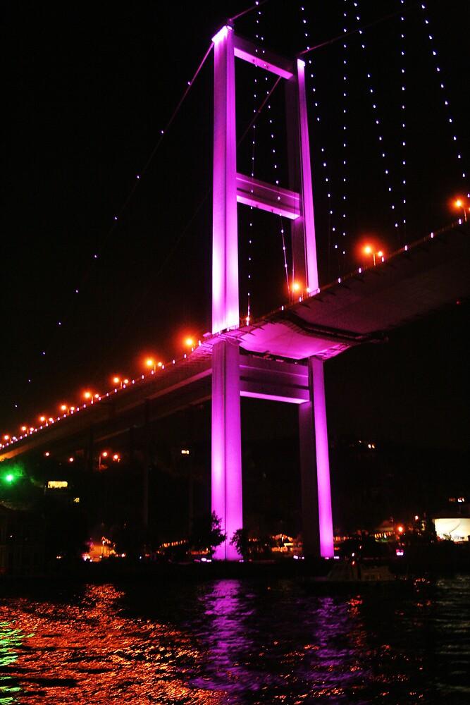 The bridge accross the Bosporus by night by Gideon van Zyl