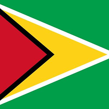 Guyana Flag Mini Skirt by stickersandtees