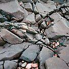 Rocks by Kate Purdy