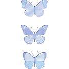 security envelope butterflies by creativemonsoon