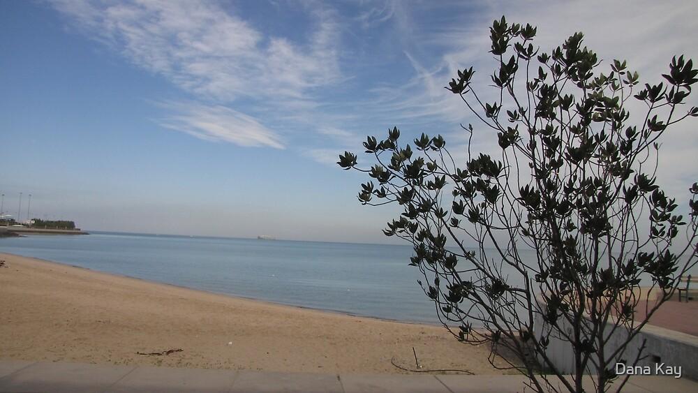 At the beach by Dana Kay