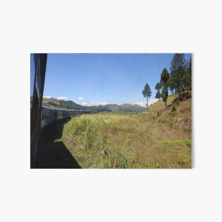 Sri Lanka Kandy Ella Train Ride Zugfahrt Bäume Trees Gras Grassland Galeriedruck