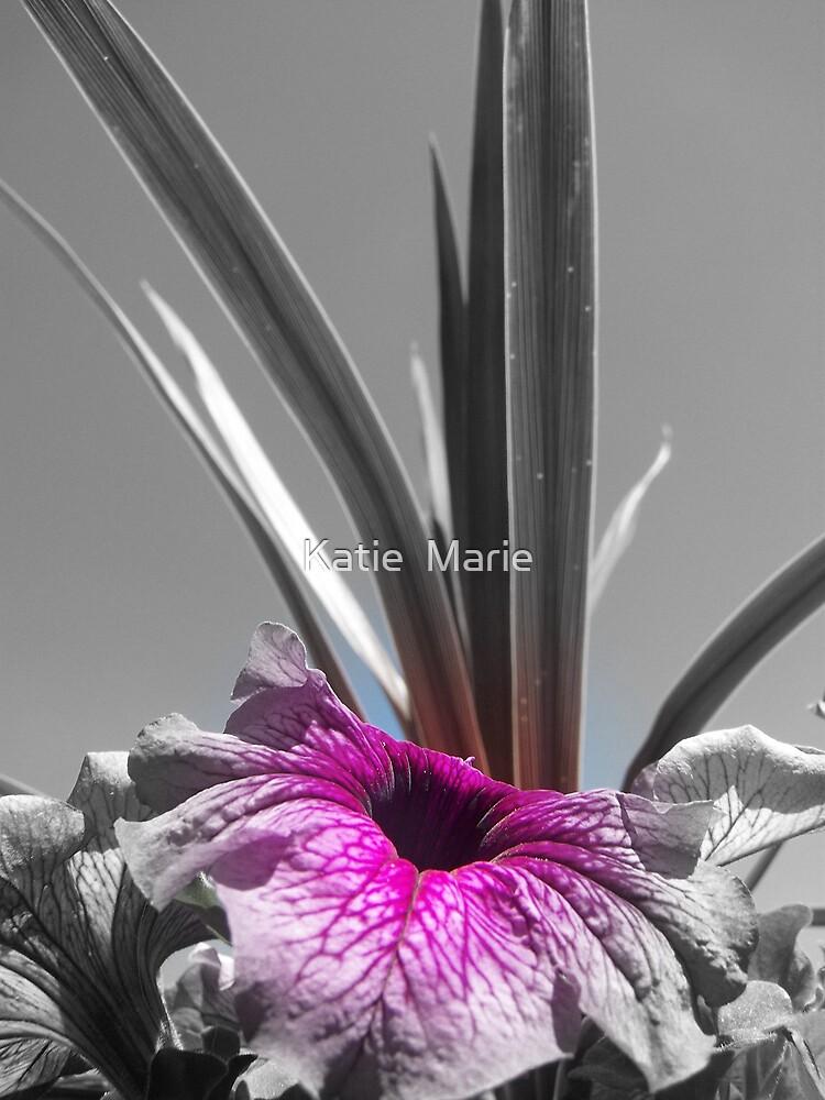 Pwetty Flower focal B & W by Katie  Marie