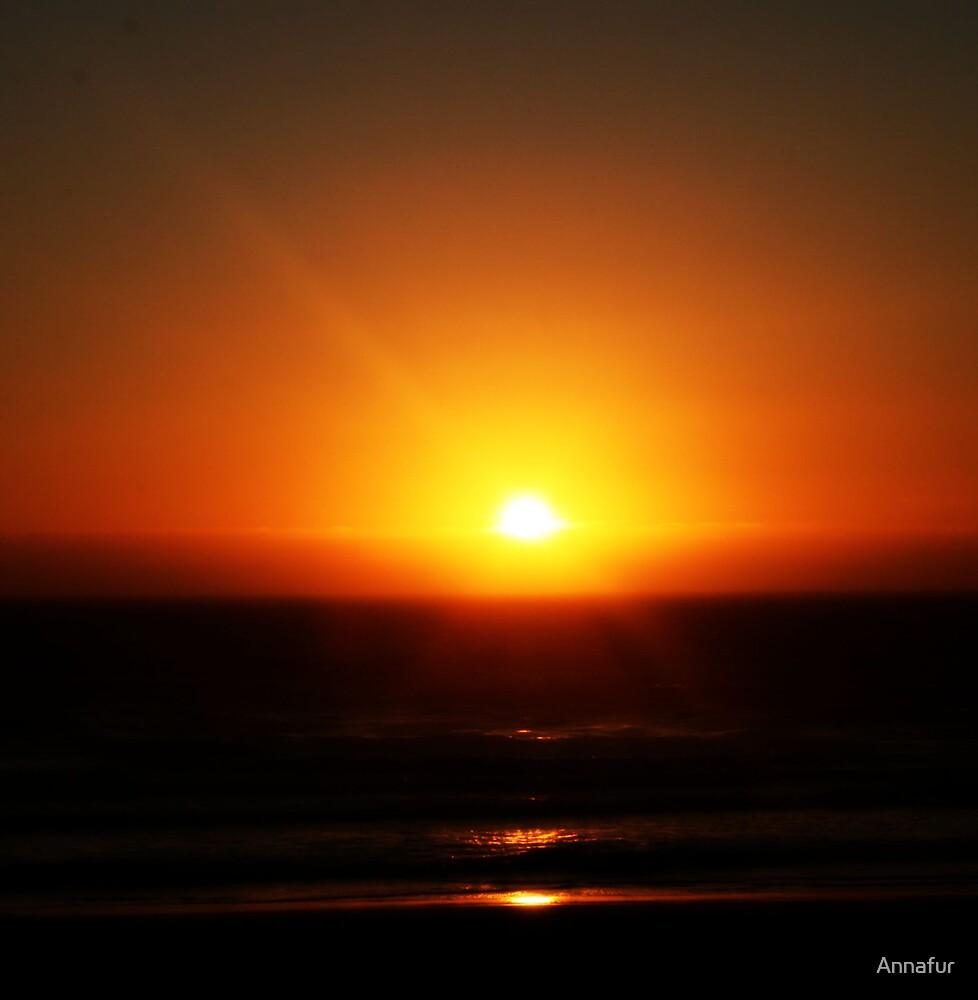 Oregon Sunset  by Annafur