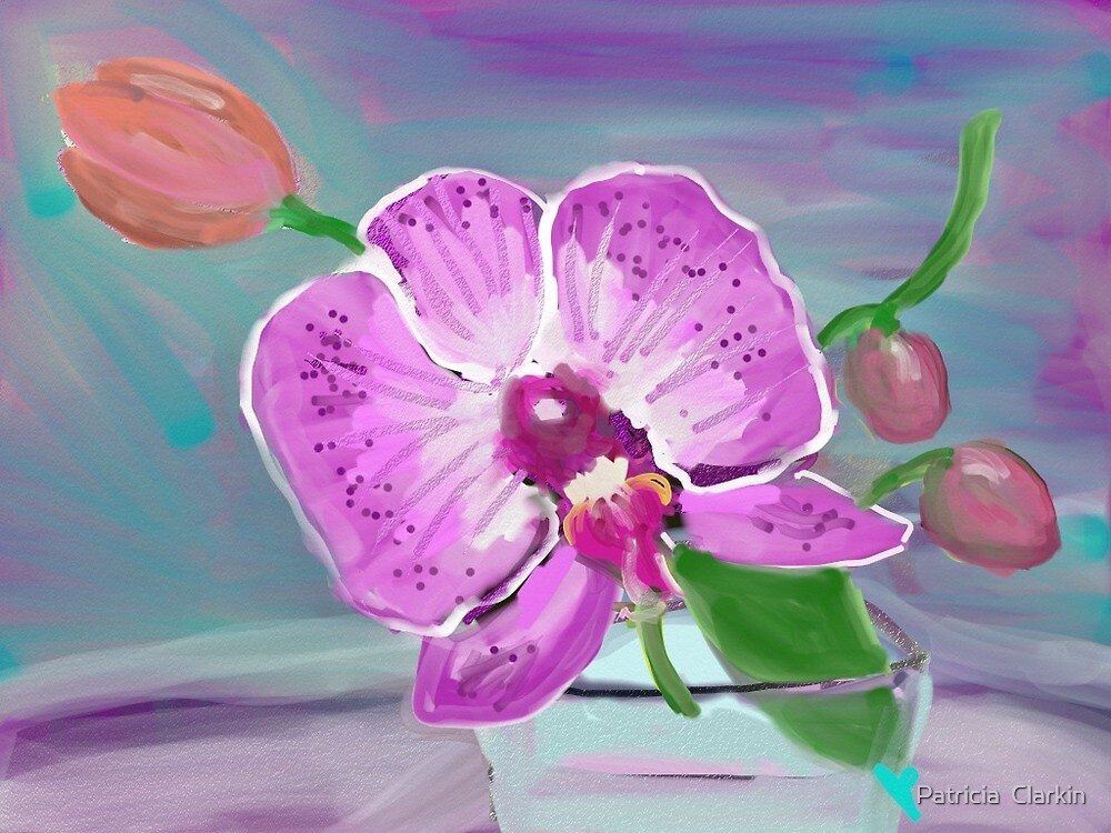 Tulip and Orchid by Trisha Clarkin