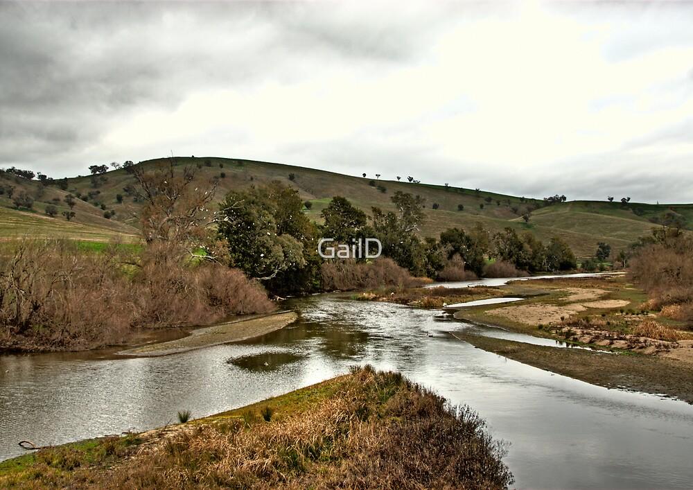 Murrumbidgee River by GailD