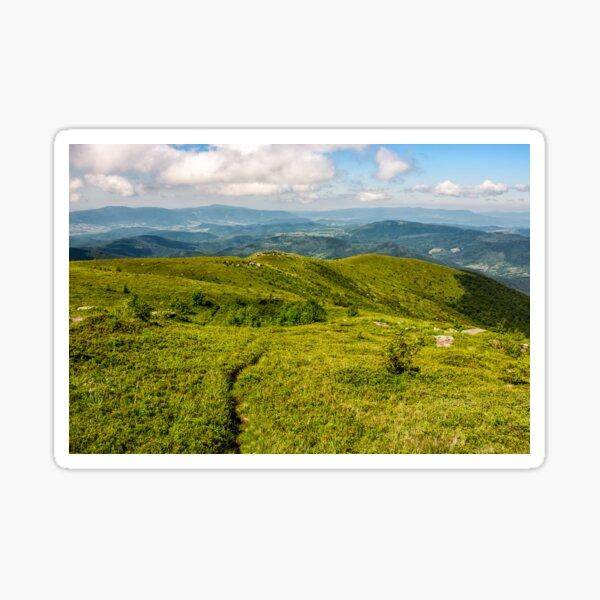 footpath through grassy mountain meadow Sticker