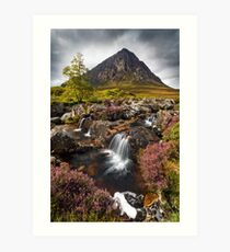 Buachaille Etive Mor and Heather. Glencoe. Highlands of Scotland. Art Print