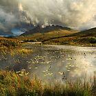 Sgurr nan Gillean. Sligachan. Isle of Skye. Scotland. by Barbara  Jones ~ PhotosEcosse