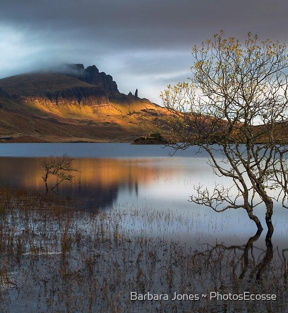 Old Man Of Storr. Sunrise. Trotternish. Isle of Skye. Scotland. by Barbara  Jones ~ PhotosEcosse