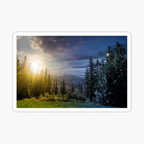 Spruce forest in High Tatras time concept Sticker