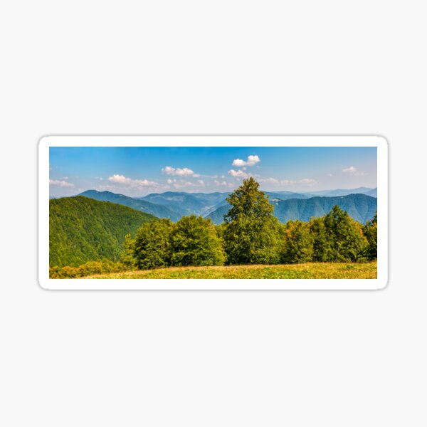 gorgeous mountainous panorama with forest Sticker