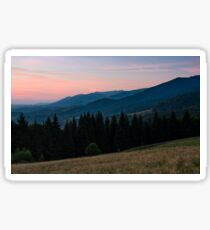 spruce forest in mountain at dawn Sticker