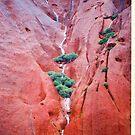 Uluru After The Rains by Ronald Rockman