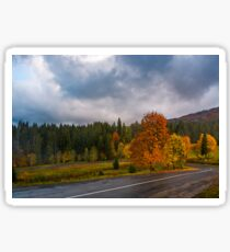 colorful foliage on serpentine in rainy fall weather Sticker