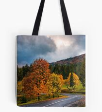 gorgeous cloudy sky over colorful foliage on serpentine Tote Bag