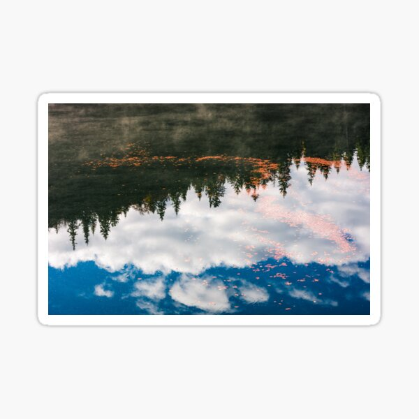 foliage on the water reflecting forest and sky Sticker