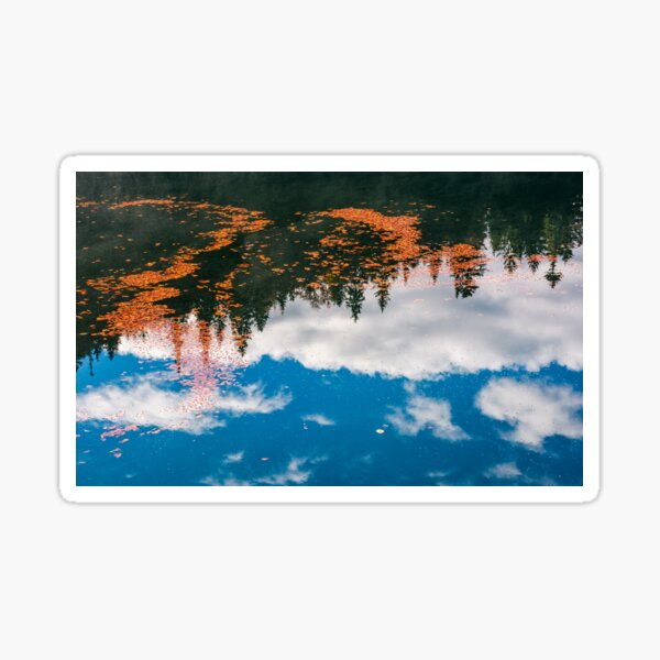 foliage on the water reflecting forest and cloud Sticker