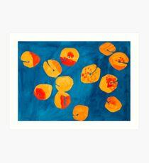 Orange apricots Art Print