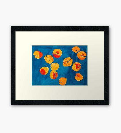 Orange apricots Framed Print