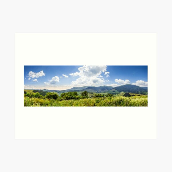 meadow with flowers in mountains Art Print