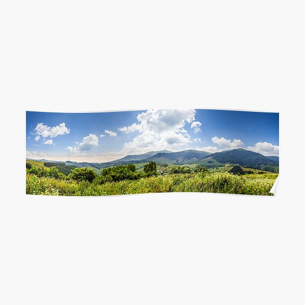 meadow with flowers in mountains Poster