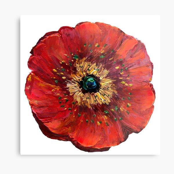 Red Poppy Design  Metal Print
