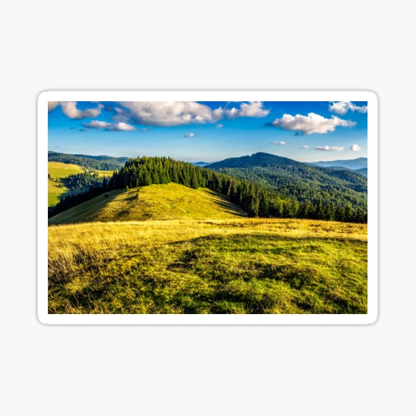 meadow on a hillside near forest  Sticker