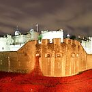 london tower with poppys by Brett Watson Stand By Me  Ethiopia