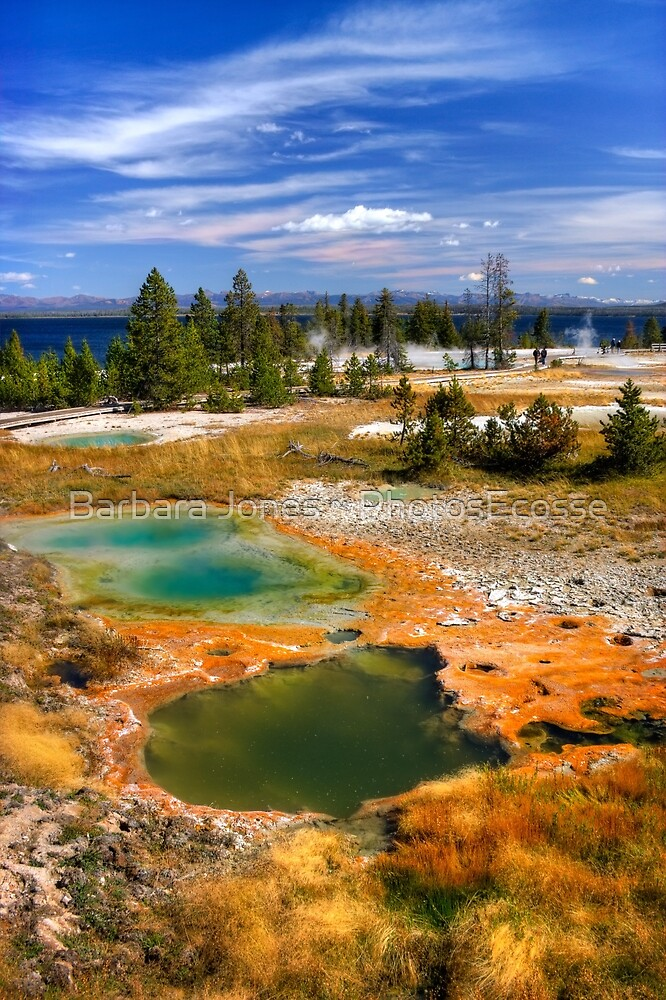 West Thumb Geyser Basin, Yellowstone National Park. USA. by PhotosEcosse