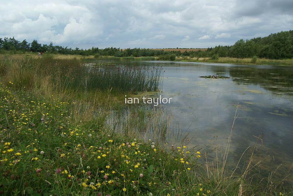 nostal pond by ian taylor