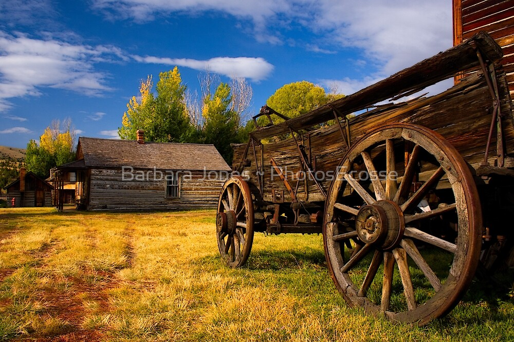 Nevada City Ghost Town, Cart and Cabin. Montana USA. by Barbara  Jones ~ PhotosEcosse