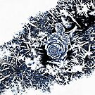 Rose Crystals Wearable Art - Blue and Black by jugofmilk