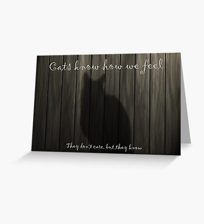 Cats Know how we Feel Greeting Card