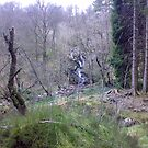 Hidden Waterfall by christinawalker