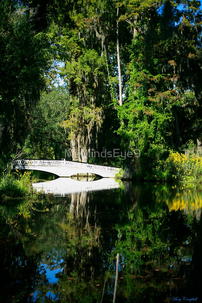 The Reflecting Bridge by Mary Campbell