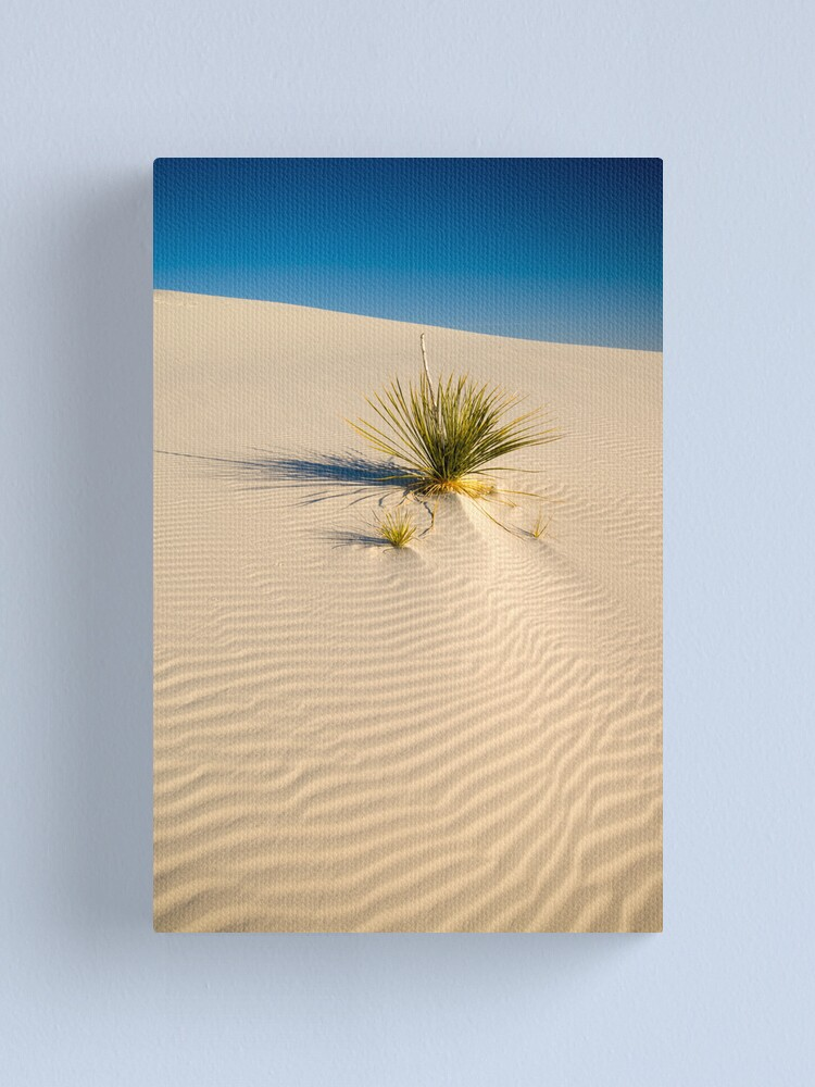 Alternate view of White Sands National Monument. Canvas Print