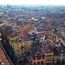 ITALY: Verona 001 by middletone