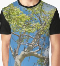 tree in the sky Graphic T-Shirt