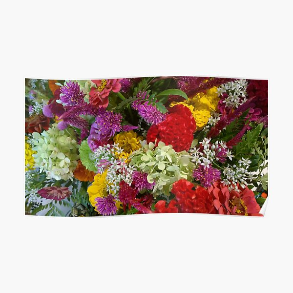 Floral Bouquet-Aster-Cock's Comb-Zinnia Poster