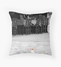 Public Convenience? Throw Pillow