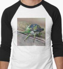 Cicada Men's Baseball ¾ T-Shirt