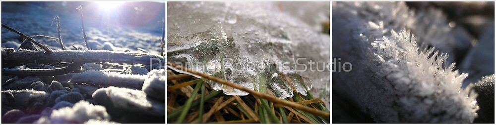 Iced Up by Deanna Roberts Think in Pictures